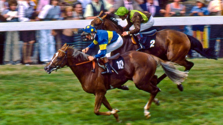 Grundy and Pat Eddery win from Bustino and Joe Mercer in the race of the century