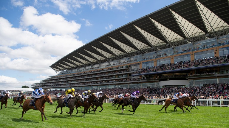 Ascot racecourse: back in action today ahead of the King George VI and Queen Elizabeth Stakes