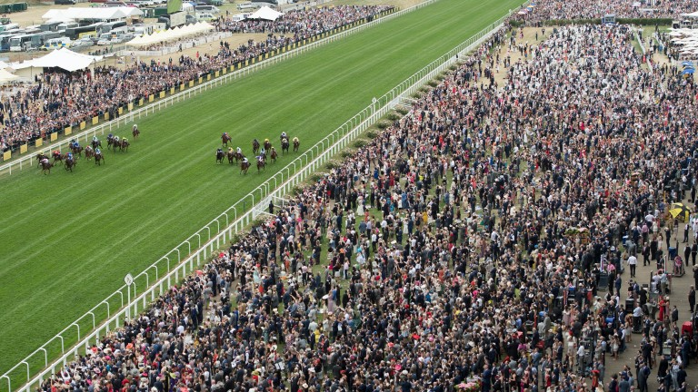 Ascot: likely the ground will be good to firm for the King George on Satuday
