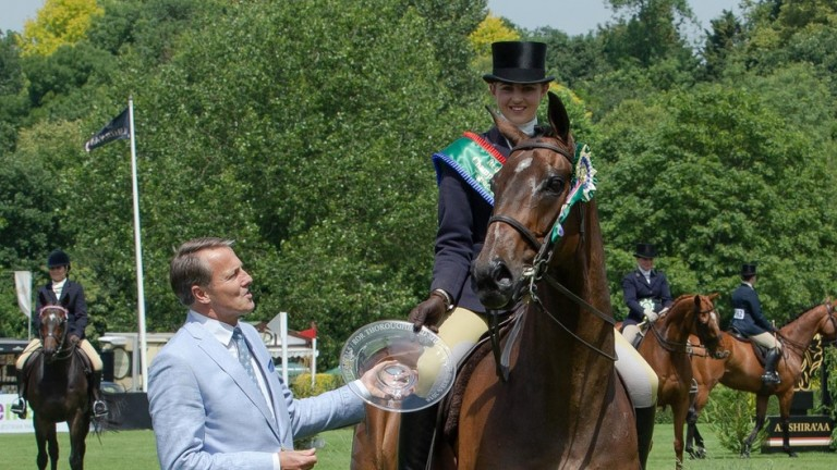 What Of It: the winner of the ROR Tattersalls Show Series Championship at Hickstead will be part of the dressage display team at Ascot