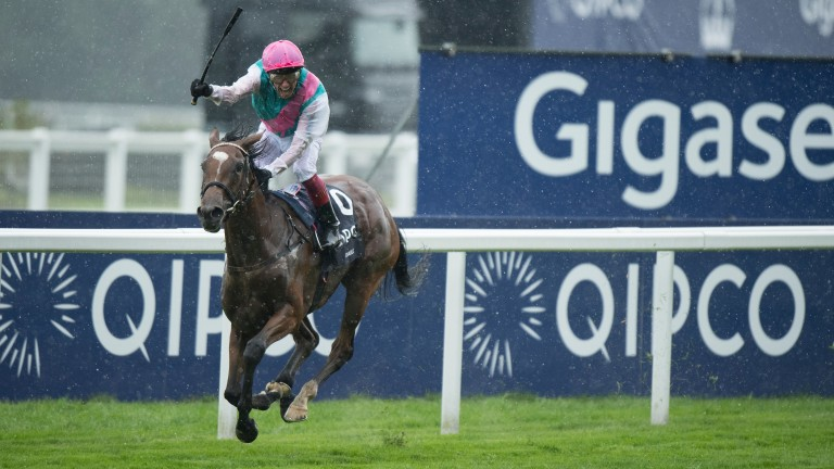 Centroid is a Dansili half-brother to last year's Arc heroine Enable