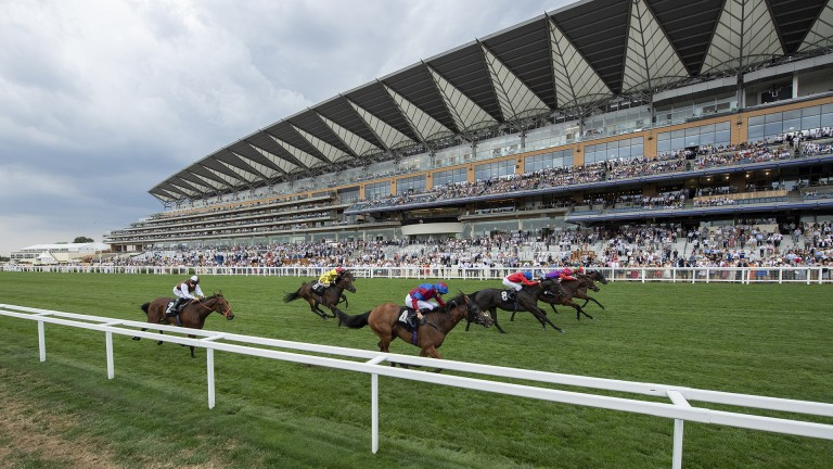 What a finish: it's four in a line with Clon Coulis (far side) coming out on top in the Listed Valiant Stakes