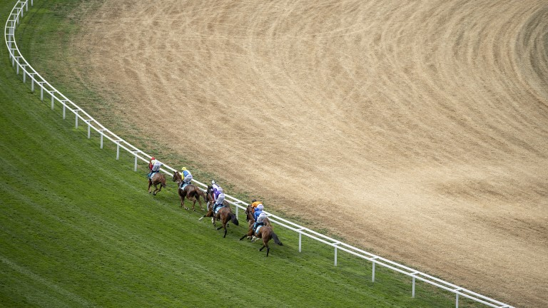 The going is good to firm at Ascot for King George day