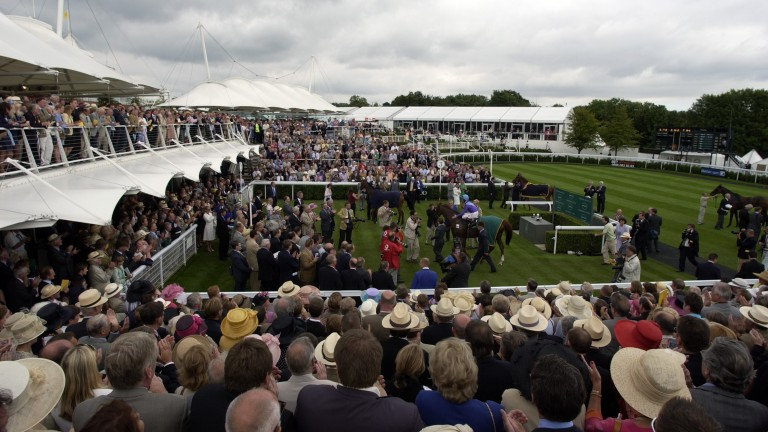 Persian Punch returns to the winner's enclosure after victory in the 2003 Goodwood Cup