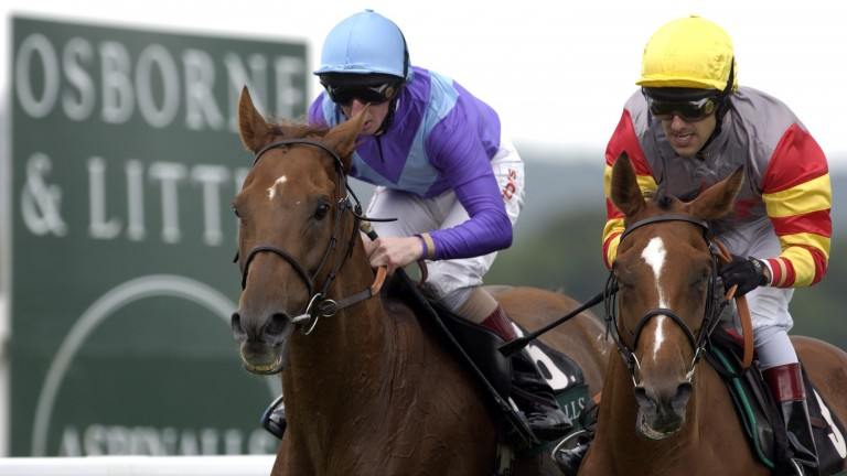 Persian Punch (left) wins the 2003 Goodwood Cup from Jardines Lookout