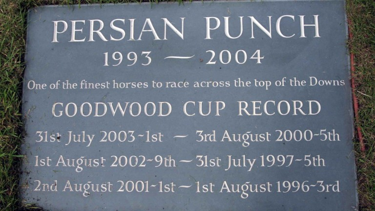 A tribute to the great stayer at Goodwood, where his ashes were scattered
