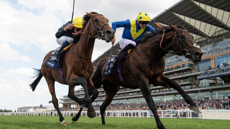 Poet's Word (right) wears down Crystal Ocean to land the King George