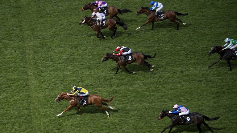 Cracked it: Crack On Crack On (leading) gets up to win the Porsche Handicap at Ascot