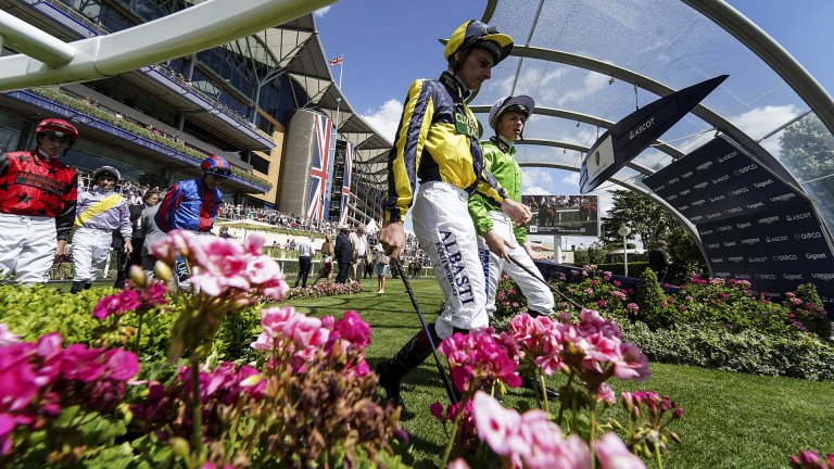 Idyllic Ascot: jockeys make their way out to the pre-parade ring
