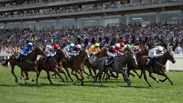 Big handicap double: Bunbury Cup winner Burnt Sugar lands the International Stakes at Ascot