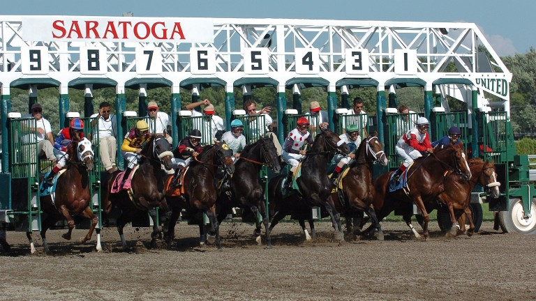 Saratoga: staged a couple of Grade 1s on Saturday