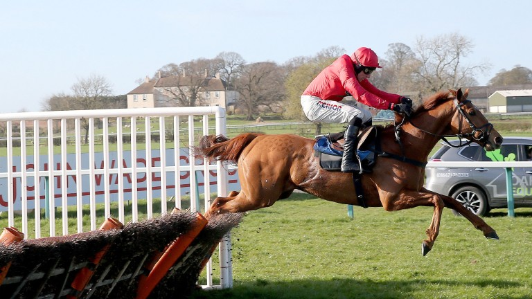 Red Tornado is one of the quartet for Dan Skelton heading to Newton Abbot