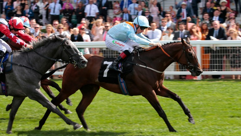 Burnt Sugar and Shane Kelly winning the International Stakes at Ascot