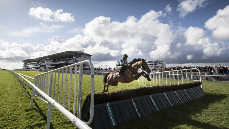 Getting a flyer: Viking Hoard wings one during the 2m½f handicap hurdle
