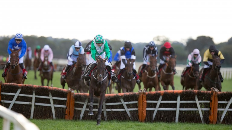 Ejayteekay: A good winner on his penultimate start at Cork, and could go well again