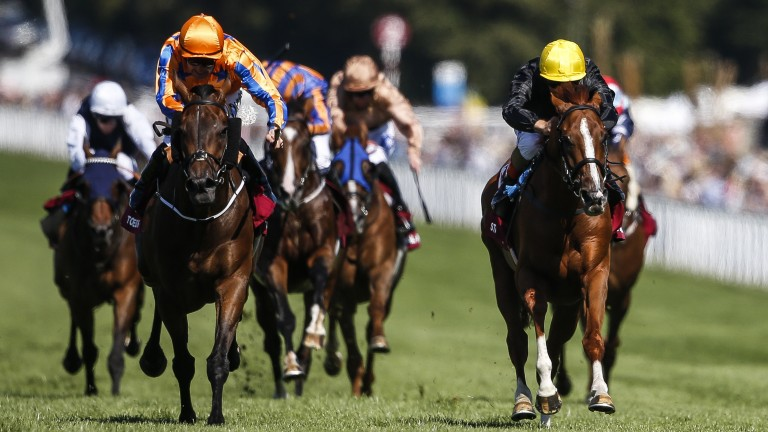 Stradivarius (yellow hat): beating Torcedor to land the Goodwood Cup