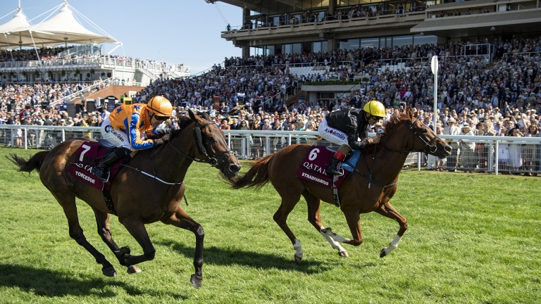 Star stayer: John Gosden's Stradivarius (far side) gets the better of old foe Torcedor in the Group 1 Qatar Goodwood Cup for jockey Andrea Atzeni and owner-breeder Bjorn Nielsen