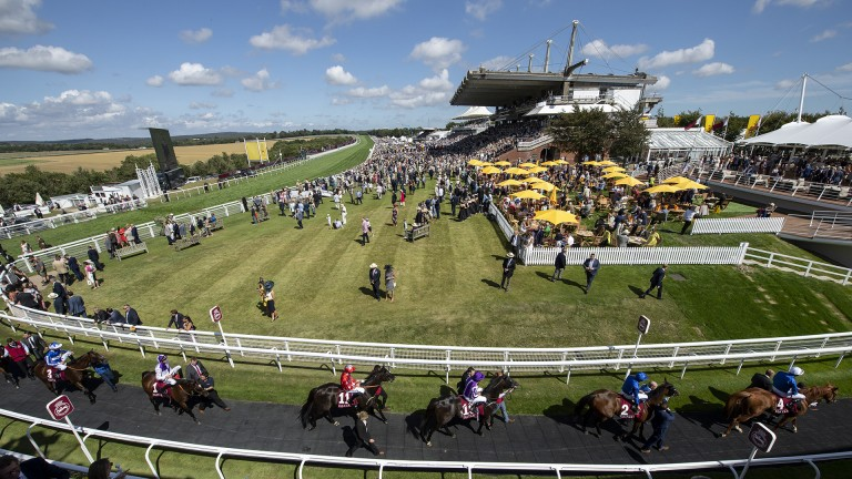 Heading back: runners return following the Lennox Stakes