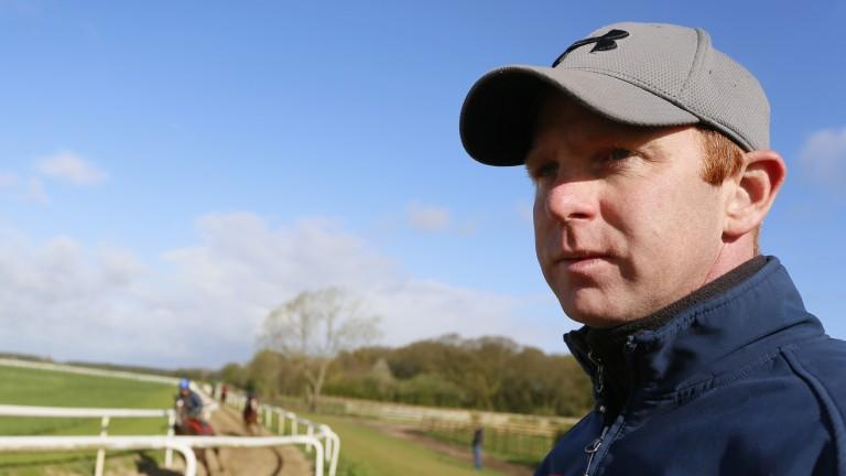 David O'Meara: trainer of Saryshagann