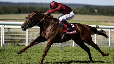 Lightning Spear: may be seen in two more Group 1s this season