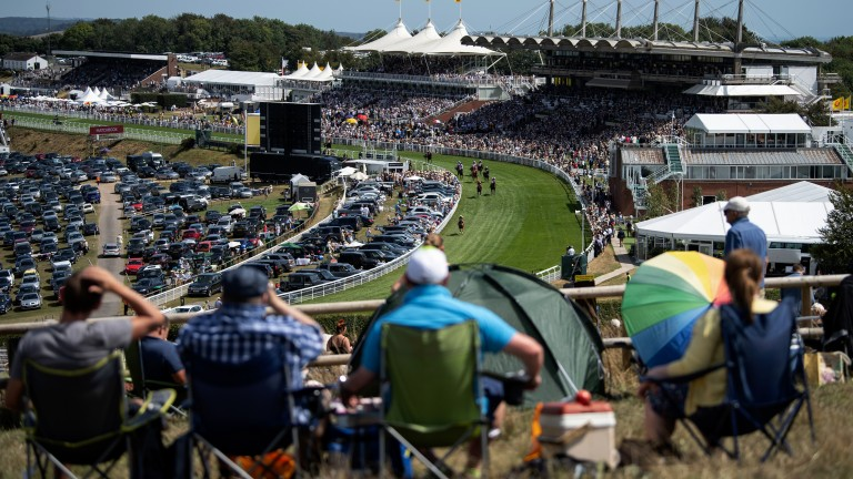 What a view: racegoers on Trundle Hill watch the runners finish in the opening race at Goodwood