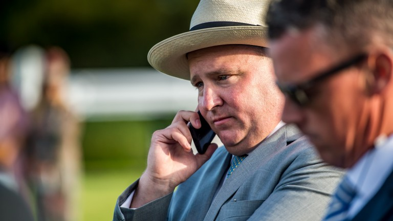 Mark McStay in the zone bidding for smart handicapper Curiosity