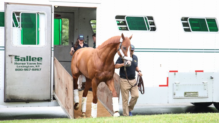 Justify: star colt was unbeaten in six starts