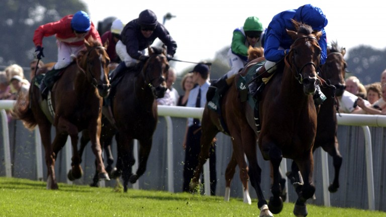 Frankie Dettori can afford a peek behind him on the Saeed Bin Suroor-trained Sakhee in the 2001 Juddmonte International