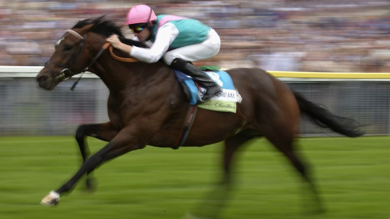 Oasis Dream: en route to winning the Nunthorpe Stakes at York