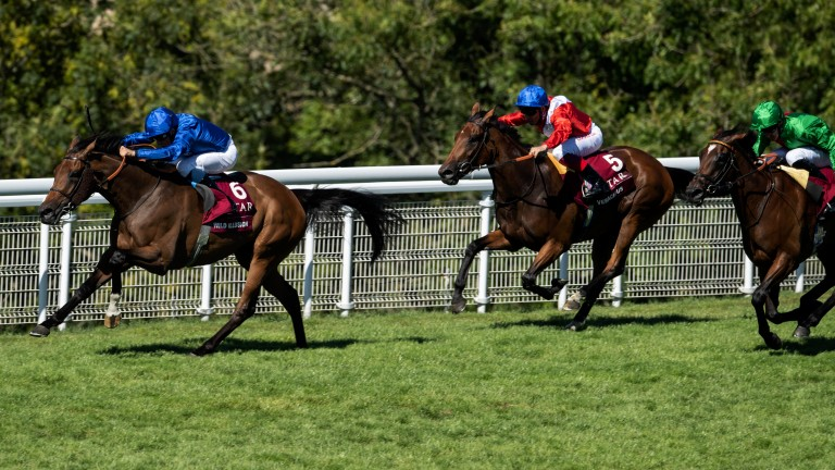 Making all: Wild Illusion leads from start to finish in the Nassau Stakes