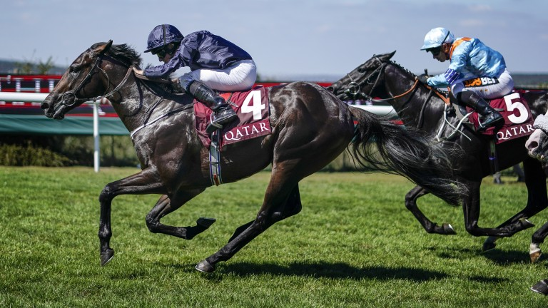 Land Force: winner of the Richmond Stakes at two