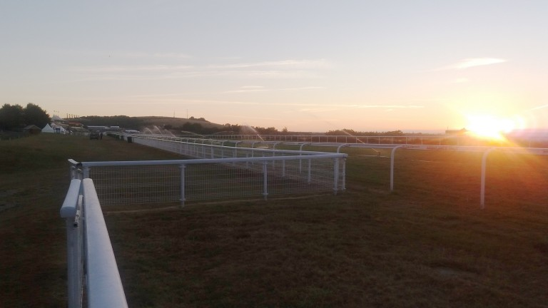 Goodwood: racing on Sunday