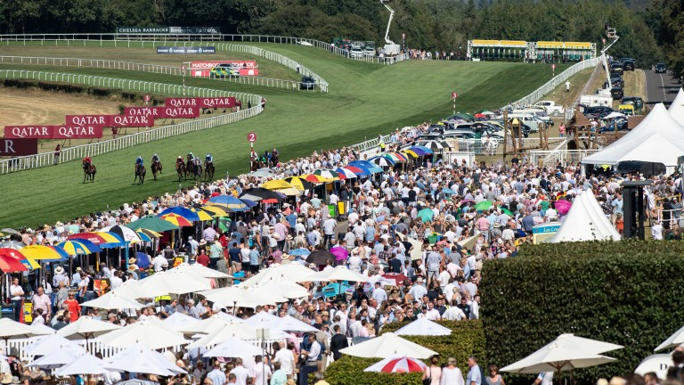 Glorious Goodwood: in all its finery on Friday