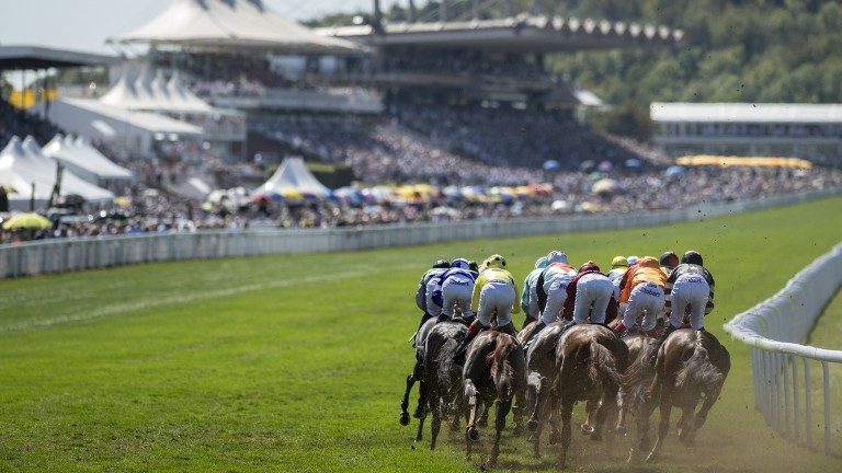 What a view: runners in the Golden Mile Handicap turn into the home straight