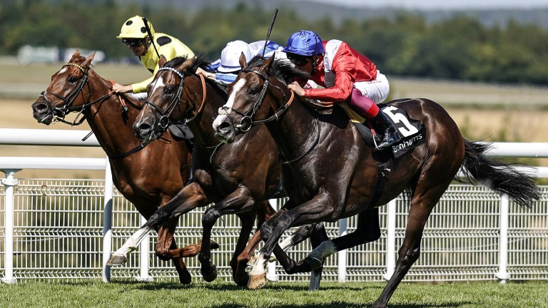 Up close: Frankie Dettori and Regal Reality (nearside) get up to land the Group 3 Bonhams Thoroughbred Stakes