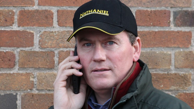 Julian Dollar: has overseen the sale of eight Group 1 winners in the last seven years