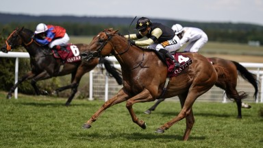 Tommy G makes the best of his way home to land the Stewards' Sprint under Silvestre de Sousa