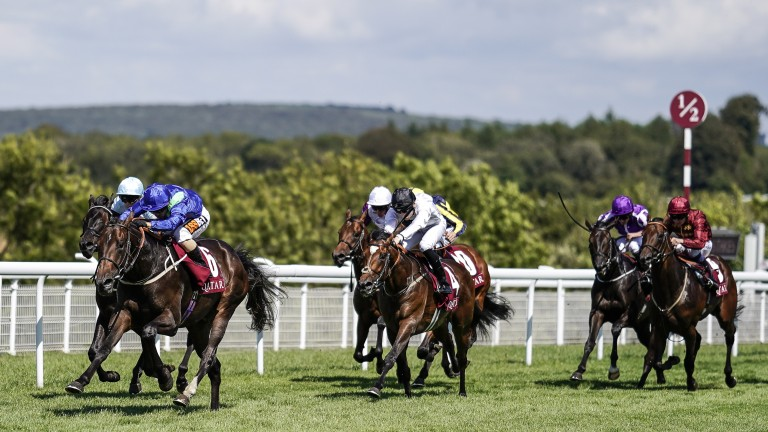 Dark Vision and Silvestre de Sousa power to the lead en route to victory in the Vintage Stakes
