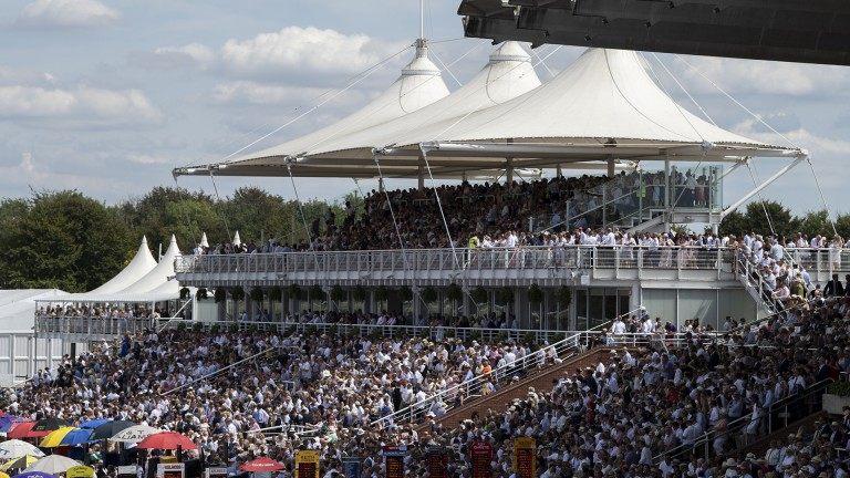 Ready for action: the stands are packed in anticipation of the Qatar Gordon Stakes