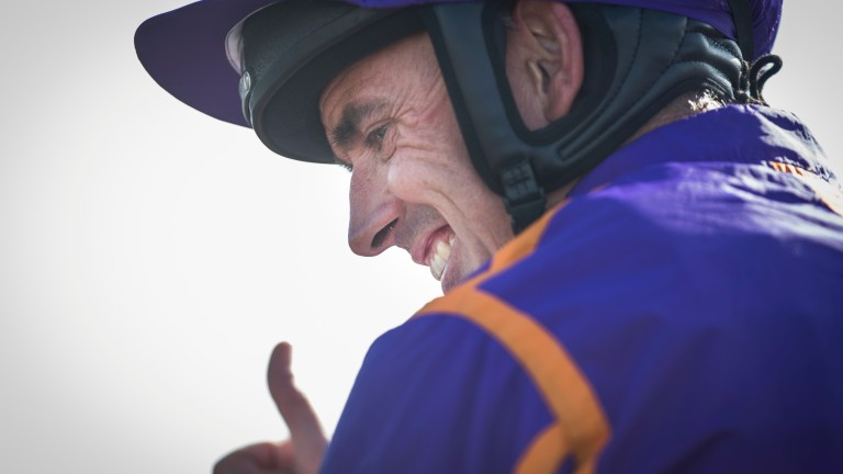 Ruby Walsh: returns at Limerick on Sunday