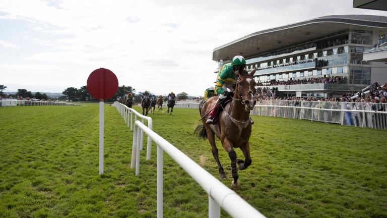 Triplicate: winner at Galway