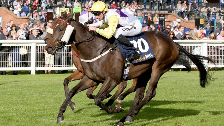 Classic Seniority: winning the Ayr Bronze Cup two years ago