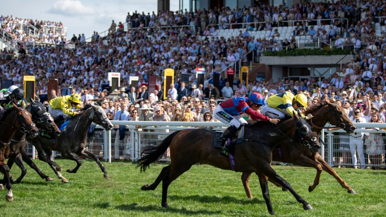 Gifted Master (Jason Watson, nearside) collars Justanotherbottle in a Unibet Stewards Cup run before a sell-out crowd