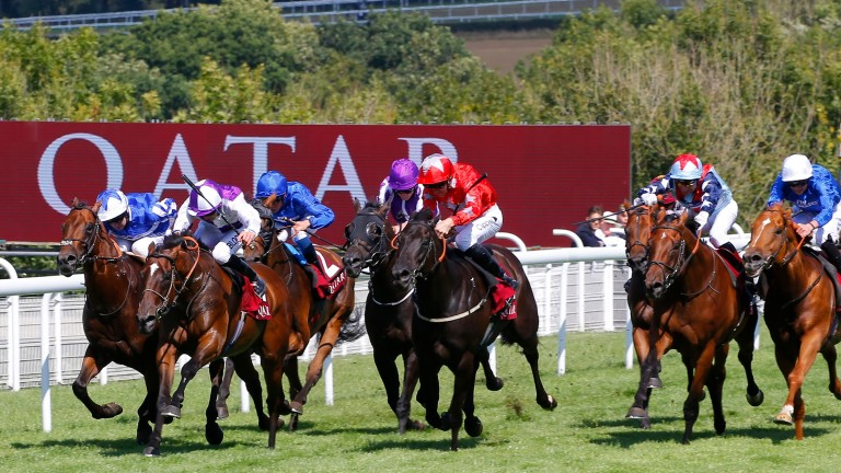 Sir Dancealot (Gerald Mosse, second right) still has work to do in last Tuesday's Qatar Lennox Stakes