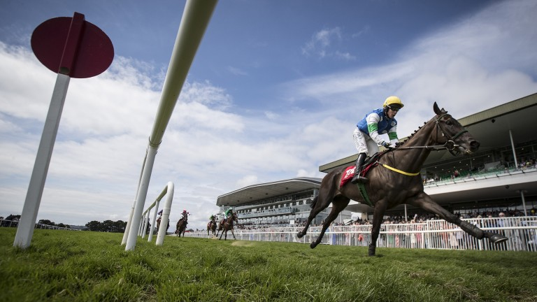 Making Short work of it: Castlehume and Adam Short stride out comfortable winners in the opening 2m½f handicap hurdle