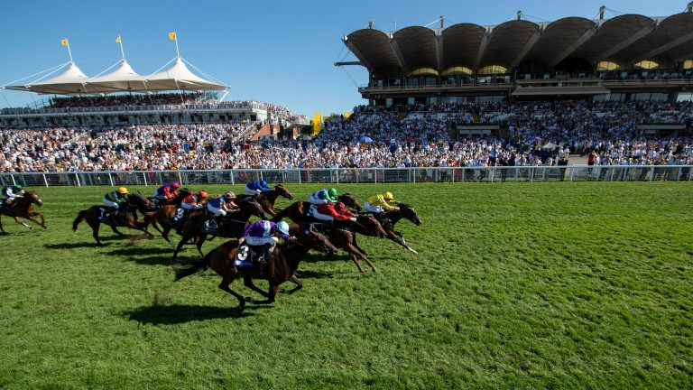 Goodwood: hosts a seven-race card this afternoon