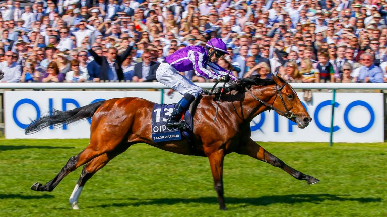 Saxon Warrior: on course for the Juddmonte International and a fifth encounter with Roaring Liom