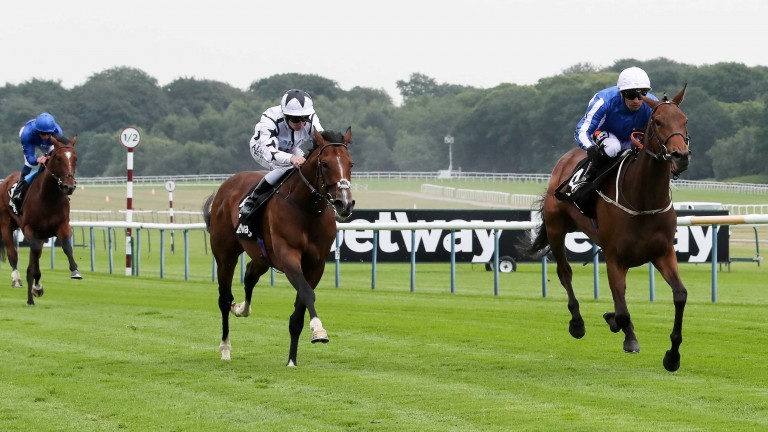 Sea Youmzain bids for a third win of the year