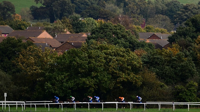 Newton Abbot: racing on Monday