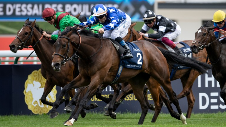 Teppal: entered in October's Kingdom of Bahrain Sun Chariot Stakes